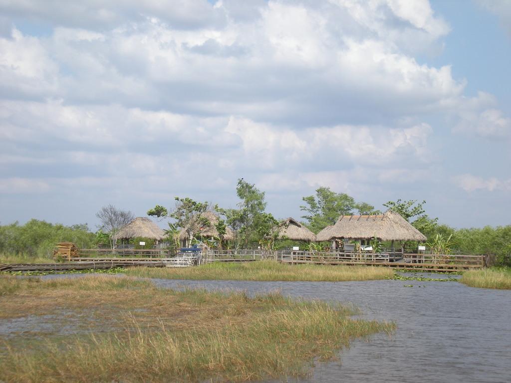 Les Everglades en Floride
