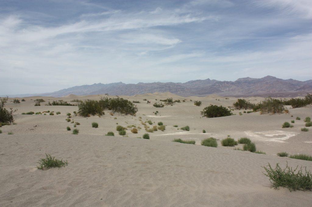 Death Valley - Ouest Américain