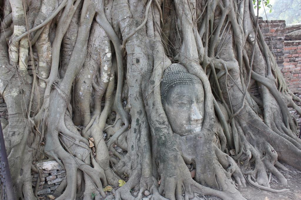 Wat Phra Mahathat à Ayutthaya