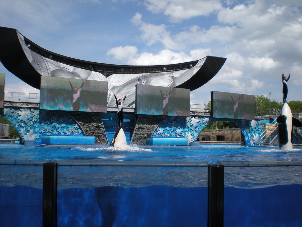 Sea World à Orlando