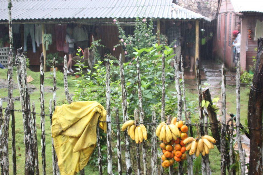 Baraque à fruits à Baracoa à Cuba