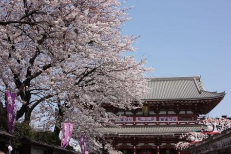 Japon_Tokyo