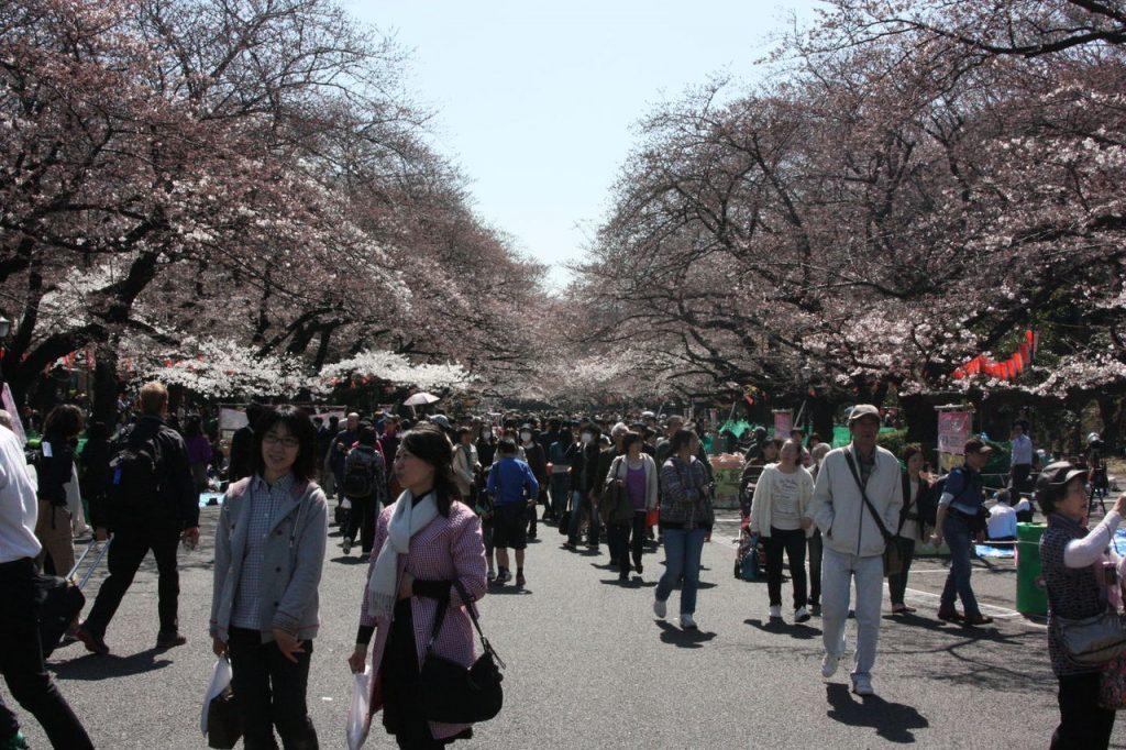 Parc de Ueno à Tokyo au Japon